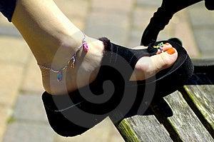 Womans Shoe Stock Image