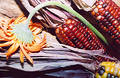 Flower & corn