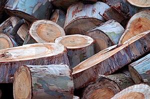 Wooden Logs Stock Photos - Image: 1208433