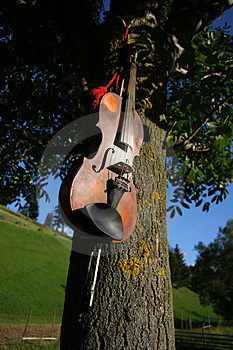 Violin Royalty Free Stock Photos - Image: 1222008