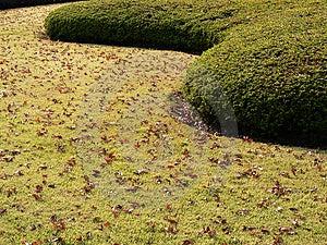 Autumnal Park Lane Royalty Free Stock Photos - Image: 1235018