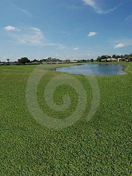 Golfcursus Met Meermeningen Stock Afbeeldingen - Afbeelding: 1260174