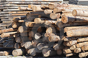 Hewn Logs Royalty Free Stock Image - Image: 1281466