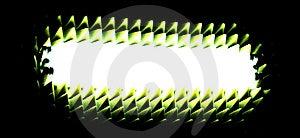 Wild Neons Stock Images