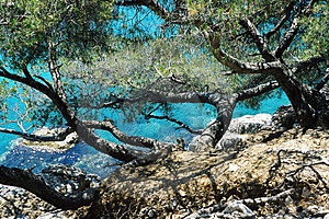 Blue Cliff 2 Free Stock Image
