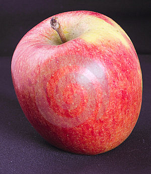 Rosy Apple Stock Photos