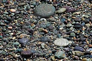 Kustkiezelstenen Stock Afbeelding