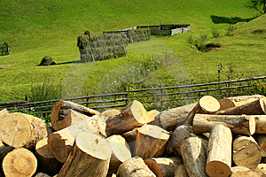 Wood Industry Stock Image - Image: 1316381