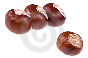 Chestnuts. Game Royalty Free Stock Photos - Image: 1332718