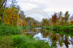 Pittoresco paesaggio autunnale del fiume e alberi chiari.
