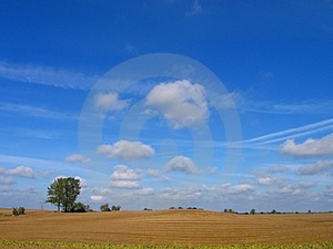 Nice wiev of field Stock Photo