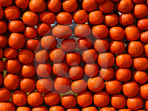 Pumpkins1 Stock Photography - Image: 1349972