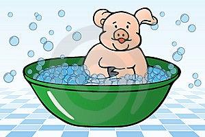 Hygiene Rules Stock Image - Image: 13407681