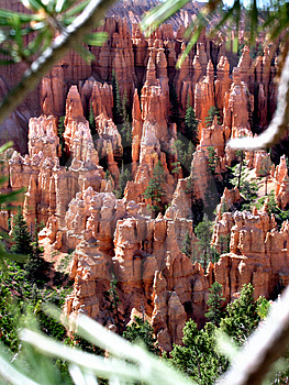 Bryce Canyon Utah Stock Photo - Image: 1353810
