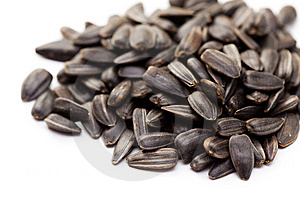 Sunflower Seeds Royalty Free Stock Photos - Image: 13552738