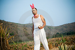Funny Easter Rabbit Walking Across The Field Stock Image - Image: 13553211