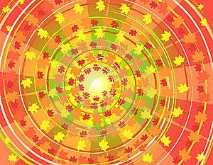 Leaf Fall Stock Image - Image: 13553561