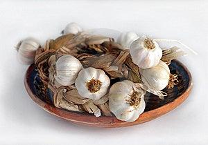 Garlic Stock Image - Image: 13558001
