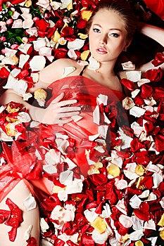 Love Theme Royalty Free Stock Image - Image: 13559336