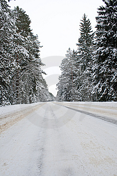 Snowy Country Road Stock Photo - Image: 13561630