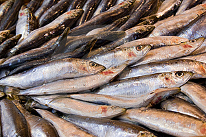 Fresh Fish At The Marketplace Stock Photo - Image: 13565470