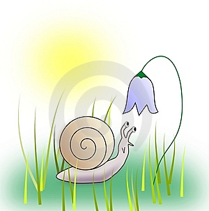 Snail And Blubelle. Royalty Free Stock Image - Image: 13566316