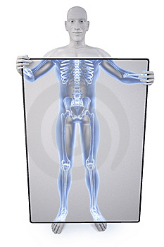 Statue Xray Royalty Free Stock Photography - Image: 13569967