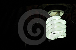 Spiral Bulb Royalty Free Stock Images - Image: 13575389