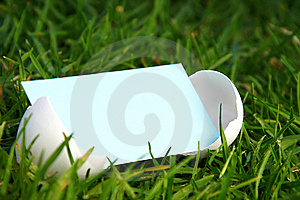 Cracked Egg With Blank Card Stock Photo - Image: 13578310