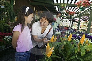 Grandmother With Granddaughter Looking At Plants Royalty Free Stock Images - Image: 13583909