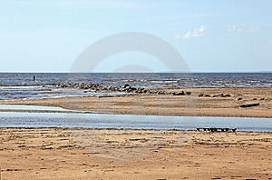 Desert Coastline Royalty Free Stock Photo - Image: 13590125