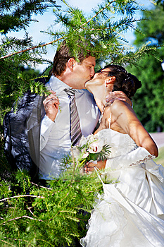 Kiss Bride And Groom Royalty Free Stock Photo - Image: 13592535