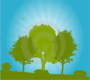 Vector Trees Royalty Free Stock Image - Image: 13598596