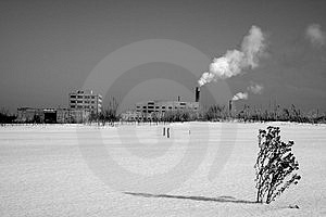 Industry And Dried Plant Stock Images - Image: 1360514