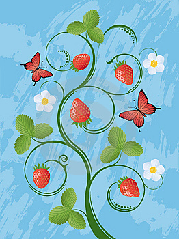 Strawberry Royalty Free Stock Photography - Image: 13604157