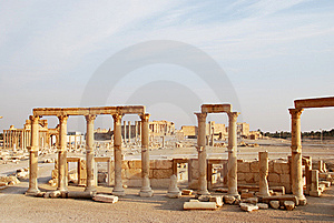 Syria, Palmyra. Royalty Free Stock Photography - Image: 13612407