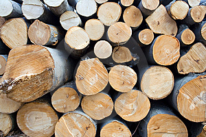 Pile Of Wooden Logs In Deforestation Area Texture Stock Image - Image: 13617501