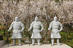 Guerrieri Cinesi Di Terracotta Immagini Stock - Immagine: 13638094