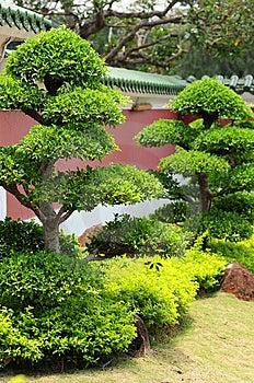 Japanese Garden Stock Photos - Image: 13639303