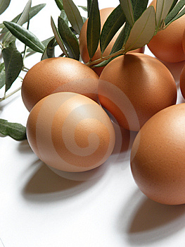 Eggs Stock Photography - Image: 13643472