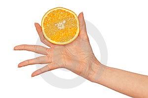 Orange Stock Photo - Image: 13657990