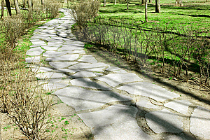 Road In The Park Royalty Free Stock Image - Image: 13659826