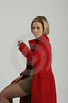 Portrait Of The Girl-blonde Royalty Free Stock Images - Image: 13665579