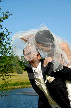 Bride And Groom Stock Image - Image: 13667231