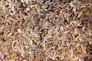 Pencil Shavings Royalty Free Stock Photo - Image: 13673975
