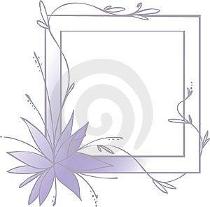 Pink Flower Stock Image - Image: 13680161