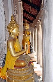 Nakhon Pathom, Thailand: Buddha Statues Stock Images - Image: 13684214