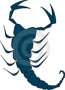 Scorpion Royalty Free Stock Photo - Image: 13686085