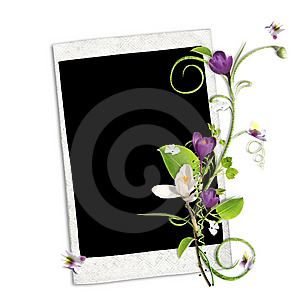 White Frame With Crocus And Spring Branch Stock Photo - Image: 13696960