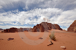 Wadi Rum Landscape (wide Angle) Royalty Free Stock Image - Image: 13699446